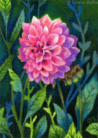 Light in the Shade ACEO floral flower art