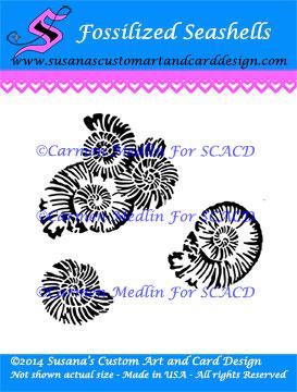 Fossilized Seashells SCACD Carmen Medlin