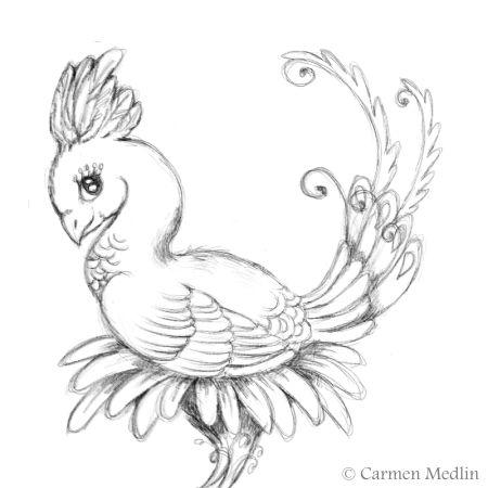Exotic Bird sketch drawing art