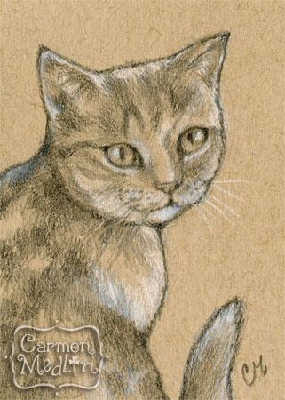 Kitty Sketch ACEO cat art by Carmen Medlin