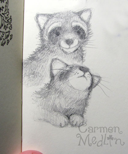 Raccoon pencil sketch Carmen Medlin