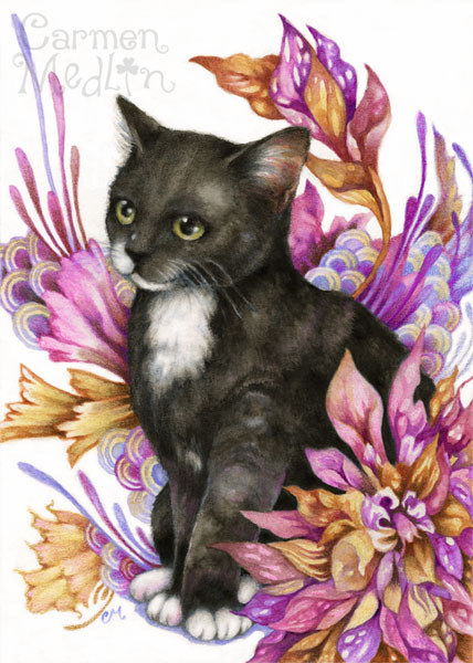 The Wanderer - cute cat colored pencil art Carmen Medlin