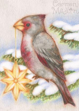 Pyrrhuloxia desert cardinal bird art by Carmen Medlin