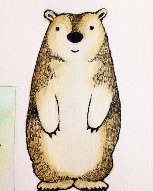 bear  sketchbook art  medlin