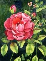 Garden Beauty 6x8 Watercolor on paper