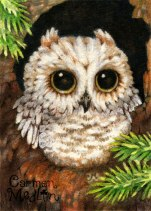 Wake Up Little Owl 2.5x3.5 Watercolor and colored pencil on paper