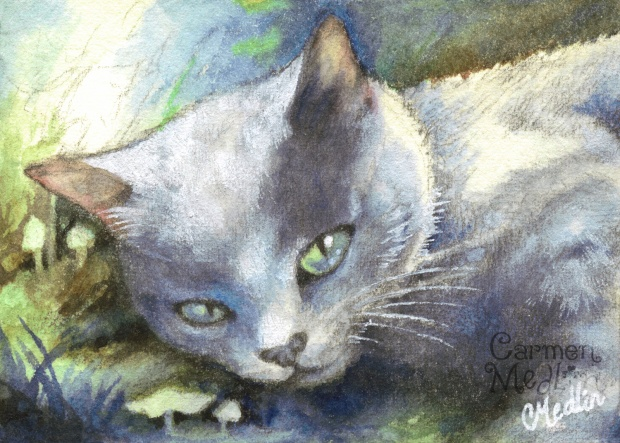 british shorthair cat painting watercolor art